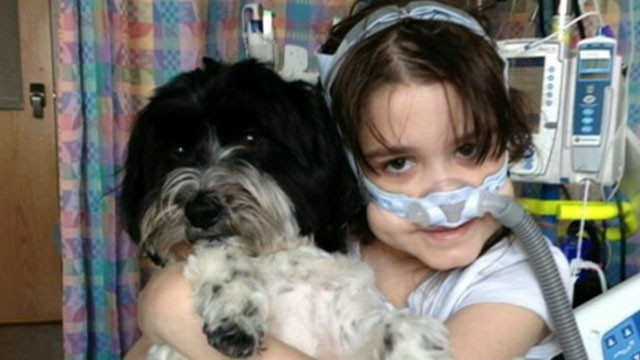 VIDEO: Sarah Murnaghan underwent two double lung transplants in June.