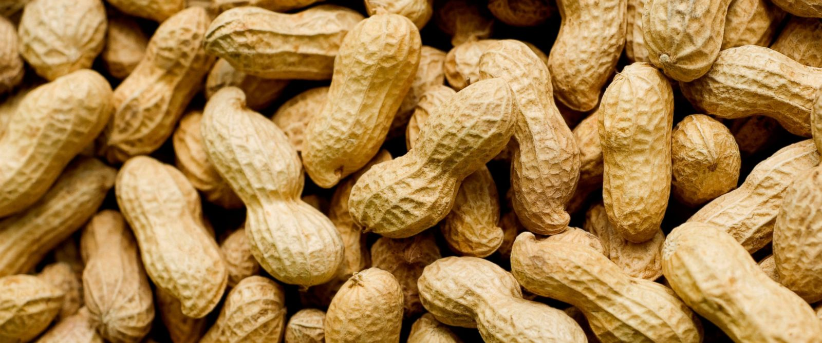 A study shows eating peanuts early on in life may help decrease the risk of developing peanut allergies.