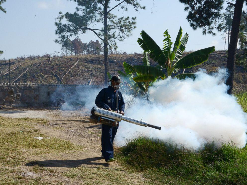 PHOTO:An employee of the Health Secretariat fumigates against the Aedes aegypti mosquito, Feb. 24, 2016, in Tegucigalpa, Honduras.