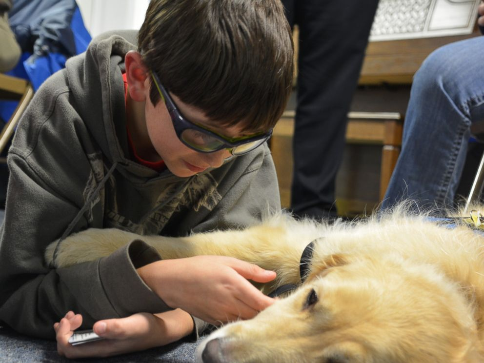 PHOTO: Lutheran Church Charities K-9 Comfort Dogs traveled to Marysville, Washington, to comfort residents after a high school shooting last week.