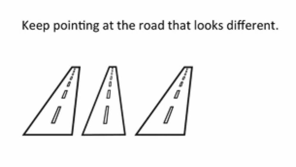 A Turn in the Road, third prize winner in the Best Illusion of the Year contest.