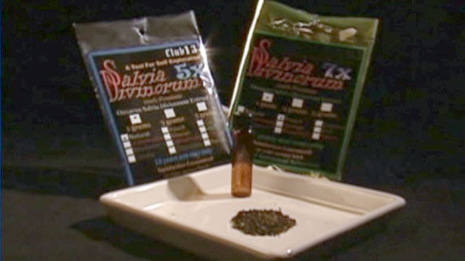 """VIDEO: The DEA calls the herb, which is legal in some states, a """"drug of concern."""""""