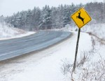 PHOTO: Deer crossing sign along snow covered landscape.
