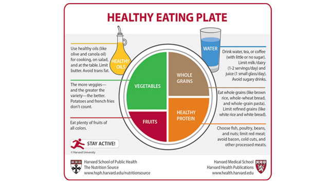 PHOTO:Harvard researchers unveil new healthy eating plate