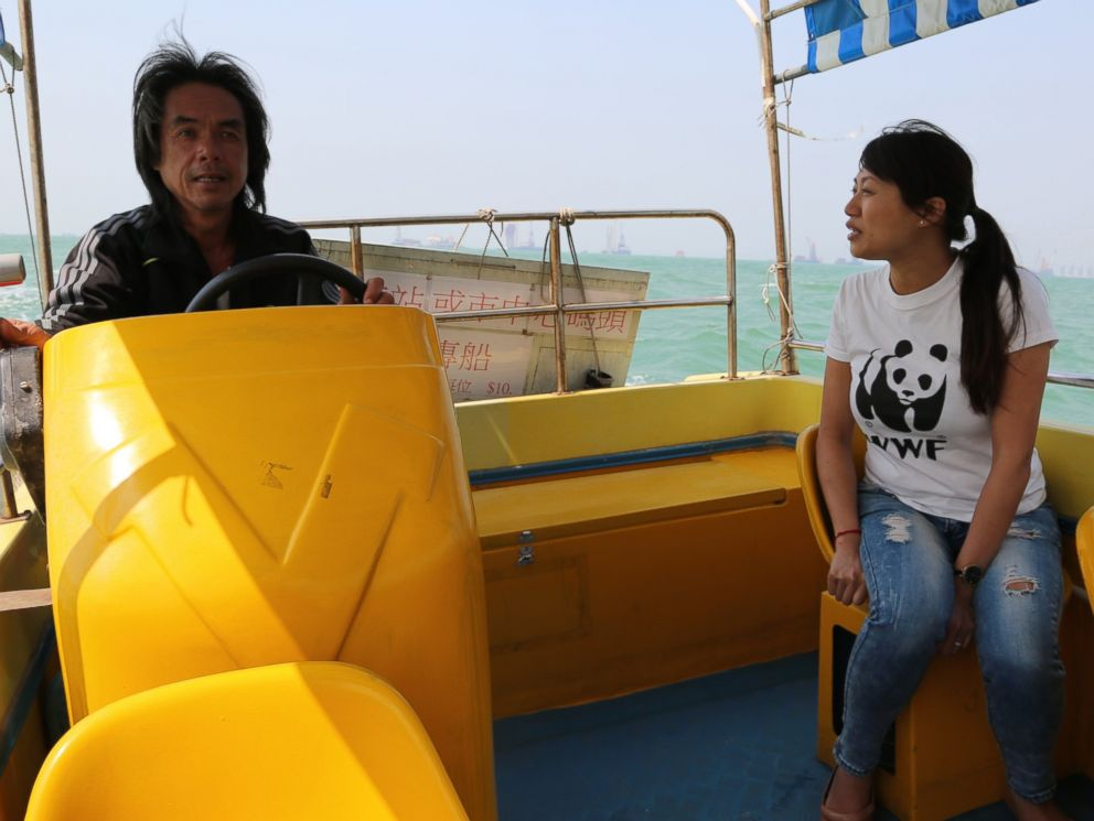 PHOTO: Samantha Lee and local dolphin watching operator scouting the waters for dolphins.
