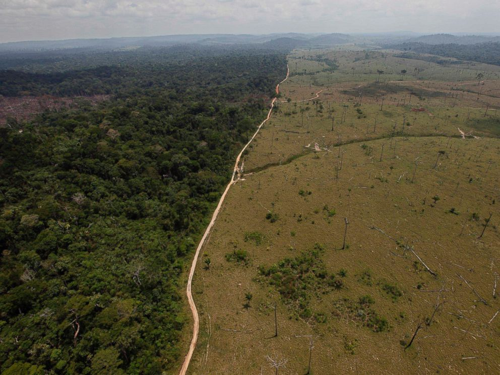 PHOTO: This Sept. 15, 2009 file photo shows a deforested area near Novo Progresso in Brazils northern state of Para.