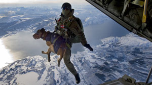 Special Forces? New Parachuting Recruit, a Dog! Taking Man?s Best Friend to a New Level, 10,000 Feet Above