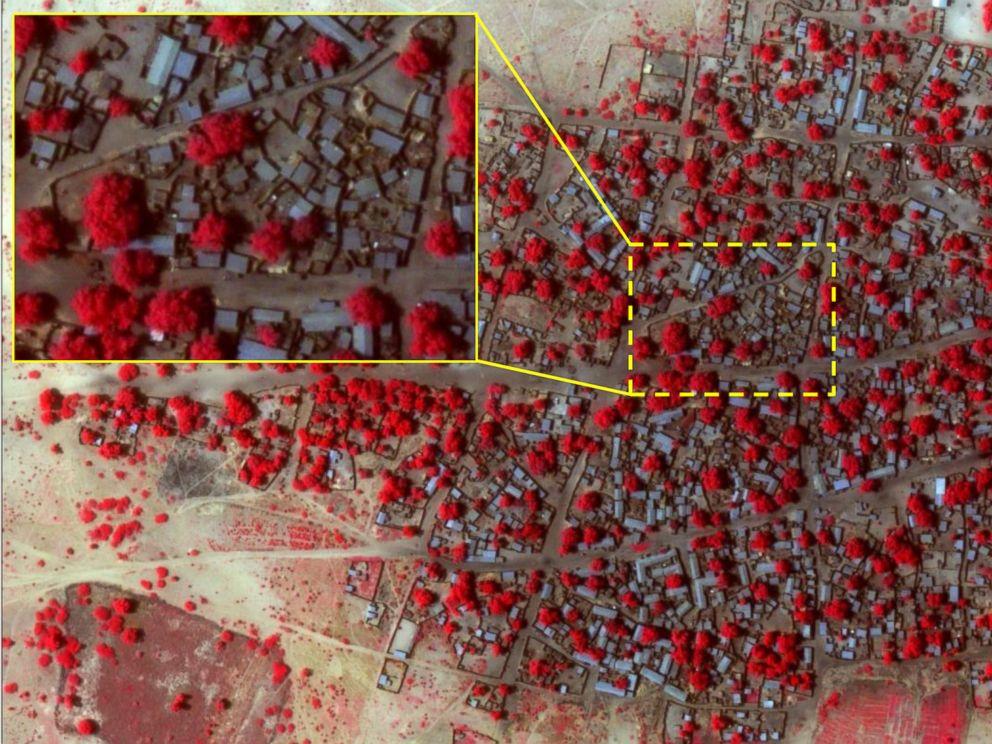 PHOTO: Satellite image of the village of Doro Baga in north-eastern Nigeria taken Jan. 2, 2015.