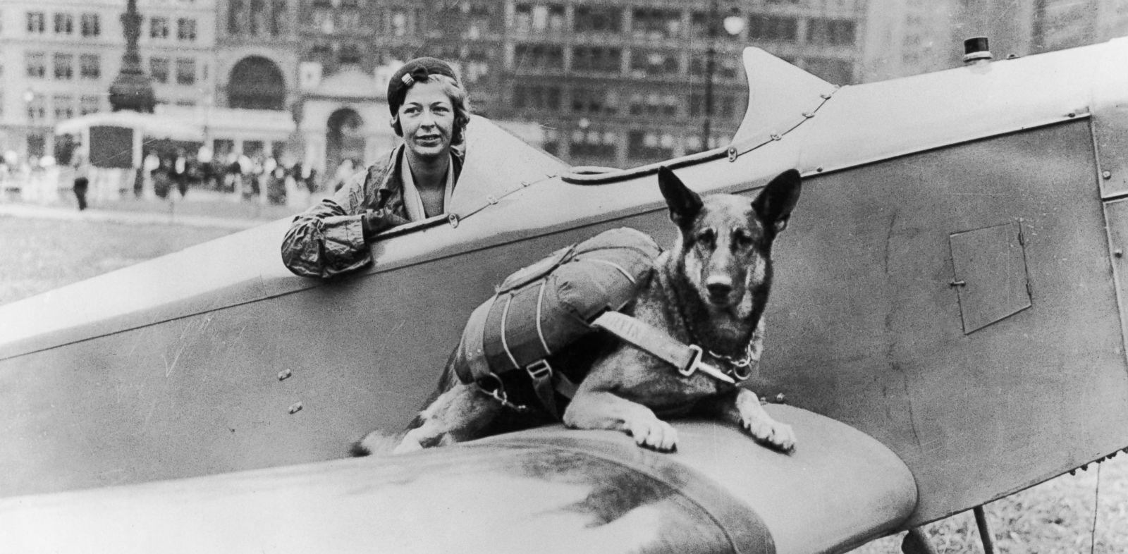 PHOTO: Parachutist dog seen here in this undated photo.