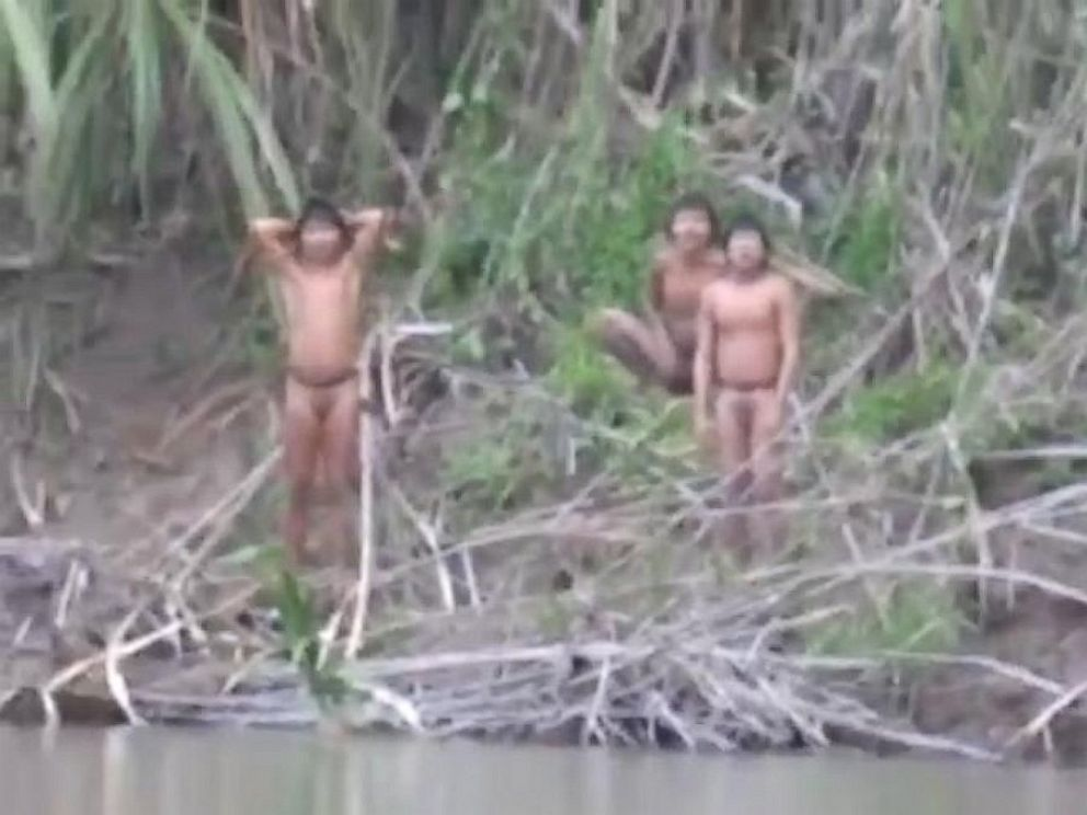 PHOTO: Members of the uncontacted tribe reached out because they were forced out of their home in the forests of Peru.