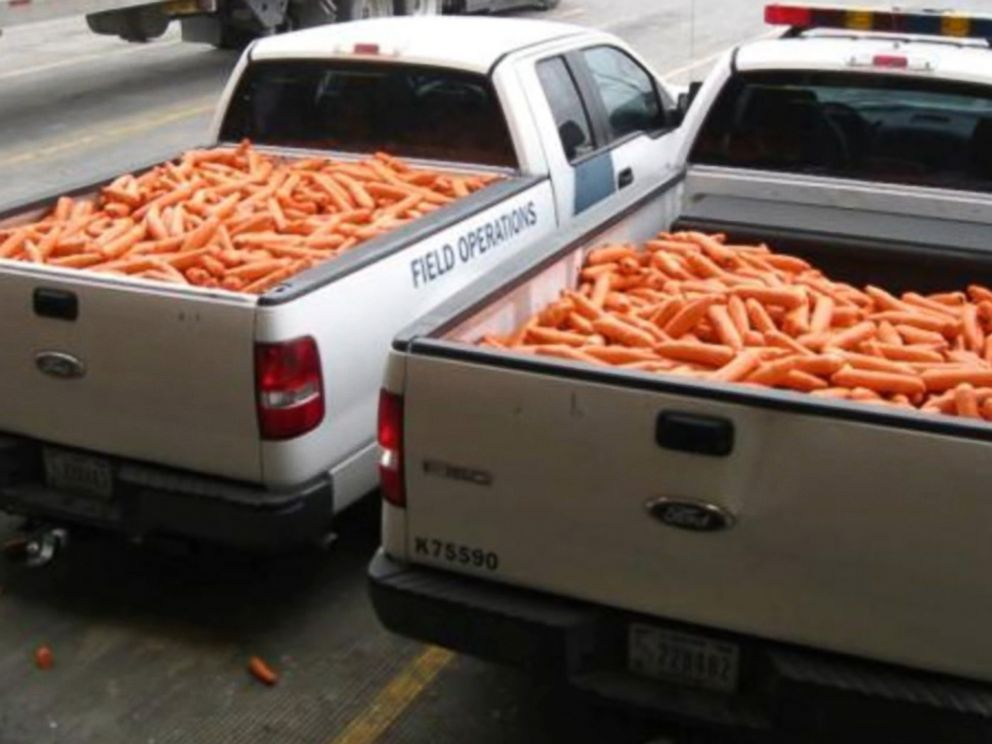 PHOTO: Carrot-shaped packages filled with pot were found among a load of real produce in south Texas.
