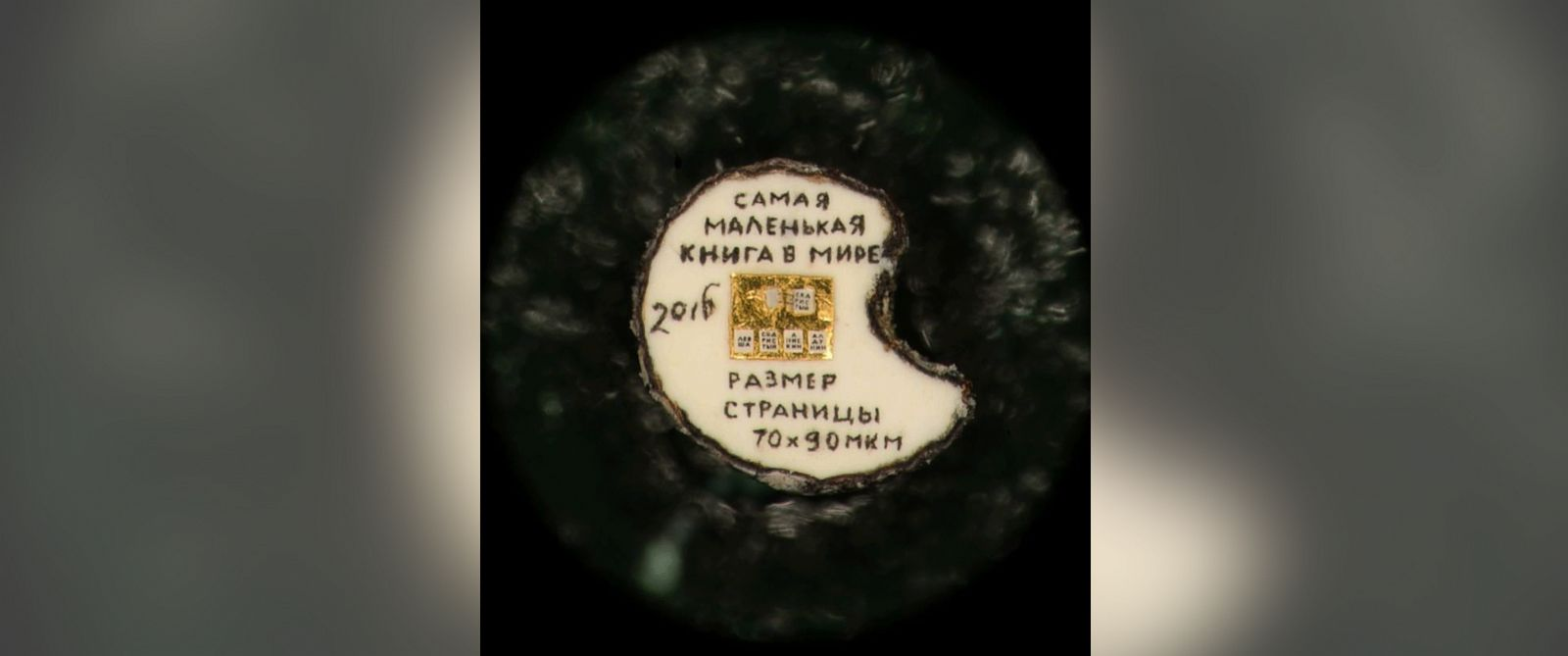 PHOTO: A Siberian man has created what he says is the smallest book in the world.