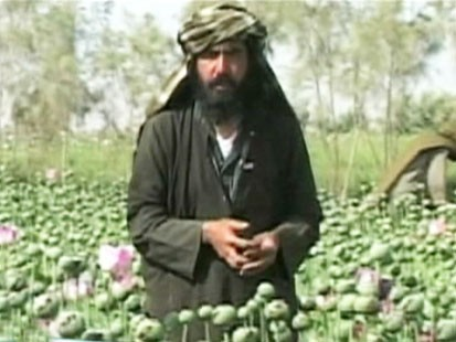 Picture of poppy farmer.
