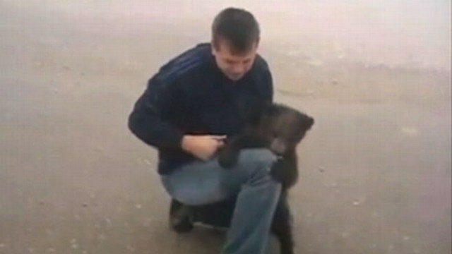 VIDEO: A bear cub in Russia latches onto a man?s leg and tries to take a bite.