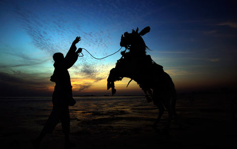 ap Pakistan horse nt 111214 wblog Today In Pictures: Dec. 14, 2011