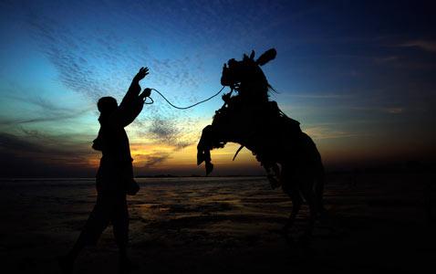 ap Pakistan horse nt 111214 wblog Today In Pictures: Dec. 14, 2011