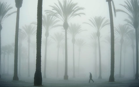 ap california fog nt 120322 wblog Pictures of the Day: Million Hoodie March, Nyepi Parade, Obama in New Mexico