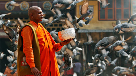 ap nepal monk pigeons thg 120216 wblog Today in Pictures: Sanremo Song Festival, Kim Jong Il Birthday, Egypt protests, Tibet, Fashion