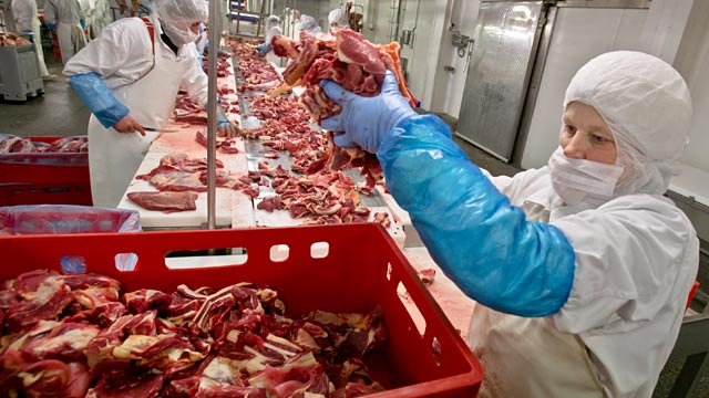 PHOTO: Meat plant