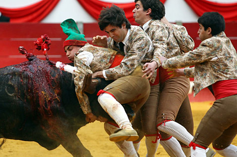 epa 403159168 bullfighters portugal ll 120326 wblog Today in Pictures: Monkey Allergies, Choked Up Actors, A Kiss from Uggie