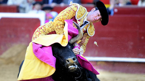 gty bullfighter Thomas Duffau thg 120321 wblog The Season of El Toro
