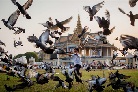 gty cambodia birds kb 130131 wblog Today in Pictures: Pigeons Take Flight, Tornado Damage, Hindu Holy Men