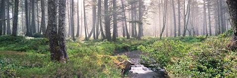 ht john chapple panoramic 2 thg 111021 wblog A Wide Wide World: Panoramic Beauty