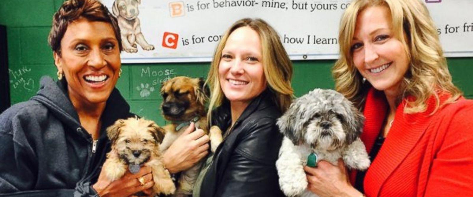 Lara Spencer Dog Adoption