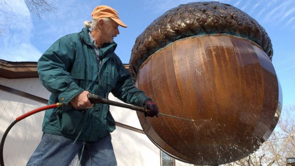 PHOTO: David Benson cleans the outside of his giant acorn in his yard in Raleigh, NC in preparation for the dropping of the big nut on New Years Eve. Benson is the sculptor who made the copper acorn in 1991 and he cleans it every year.