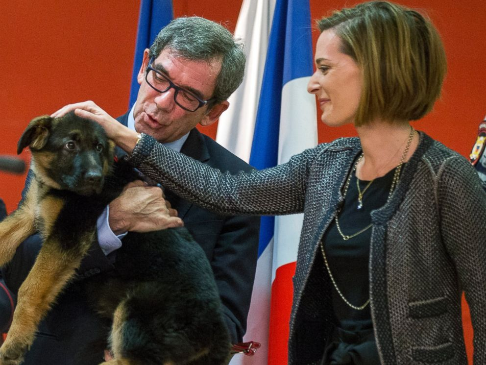 PHOTO: French Ambassador to Russia, Jean Maurice Ripert, holds a puppy, named Dobrynya, as his wife Yael pets the puppy during a ceremony presenting the puppy to French police in the French Embassy in Moscow, Russia, Dec. 7, 2015.
