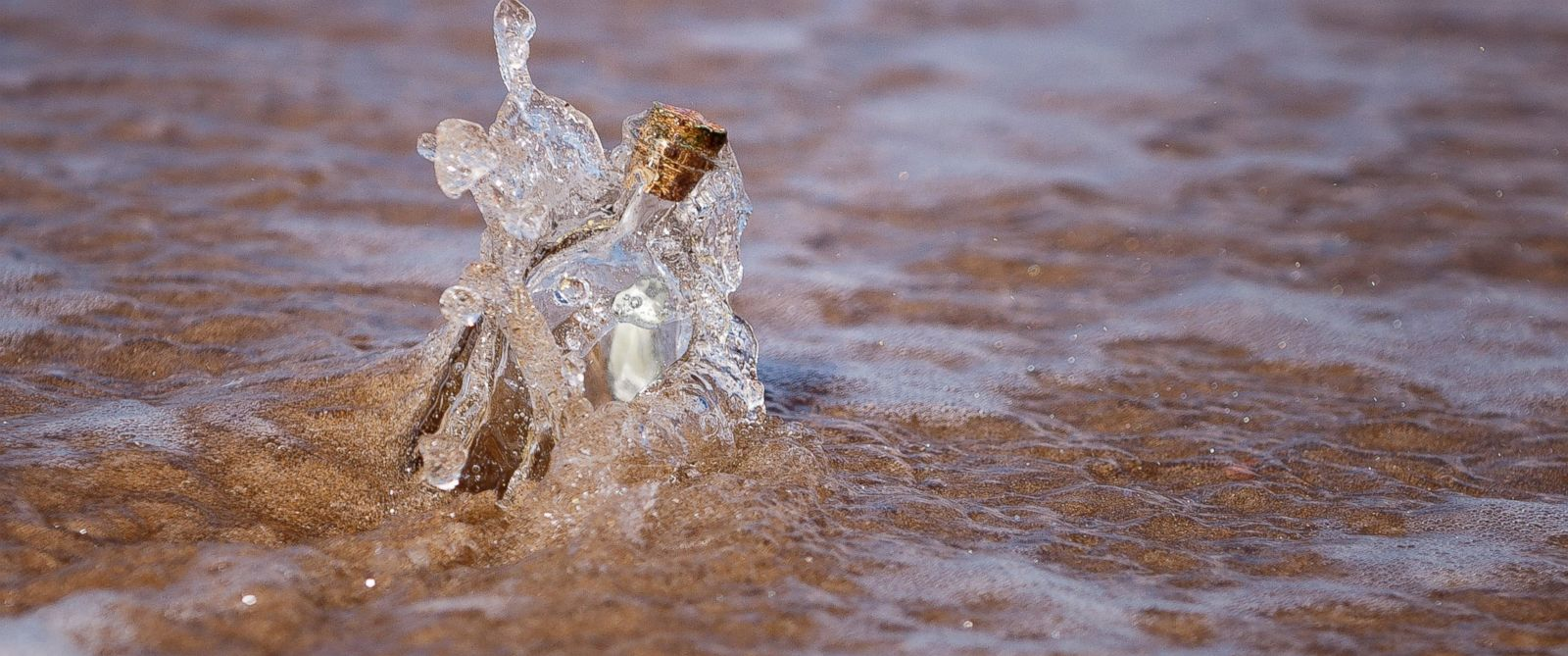 PHOTO: A message in a bottle is visible on a beach in this stock image.