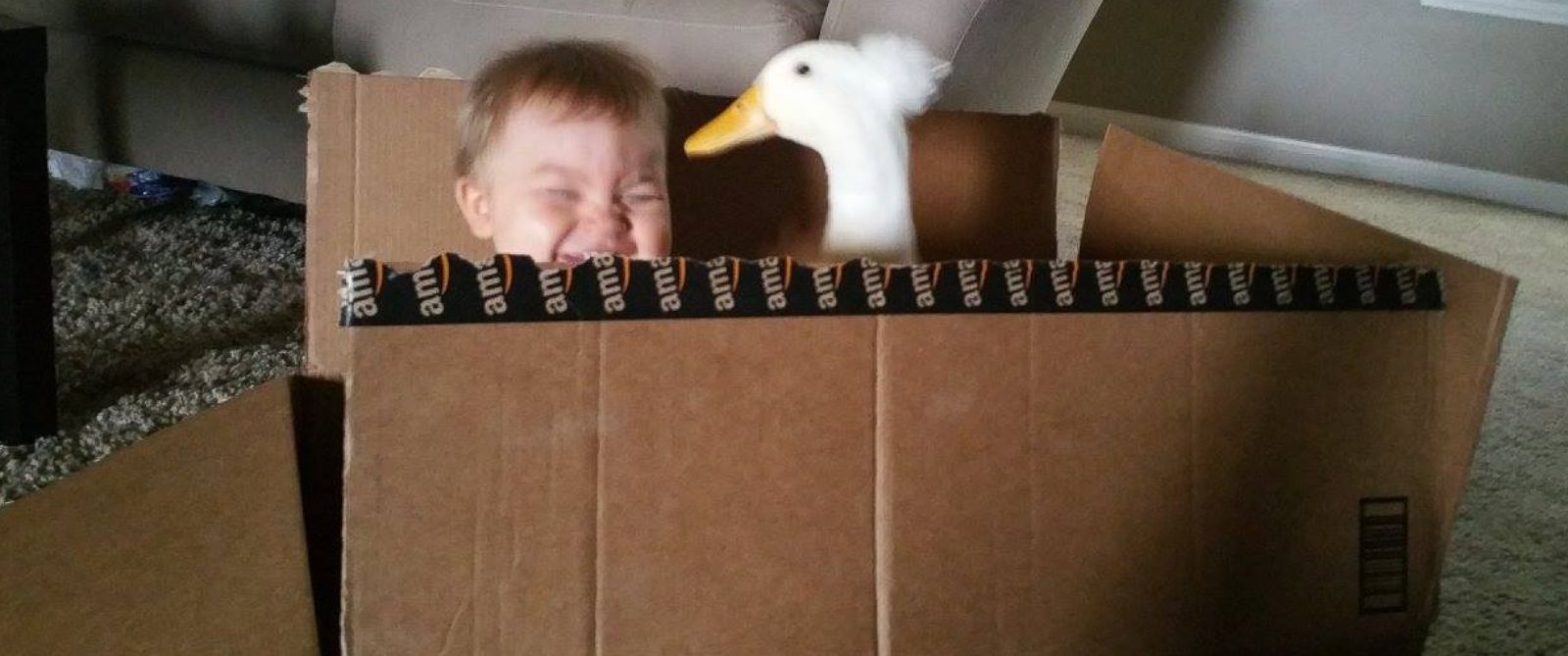PHOTO: Toddler Tyler Young and his best friend, the families pet duck known as Beaker.