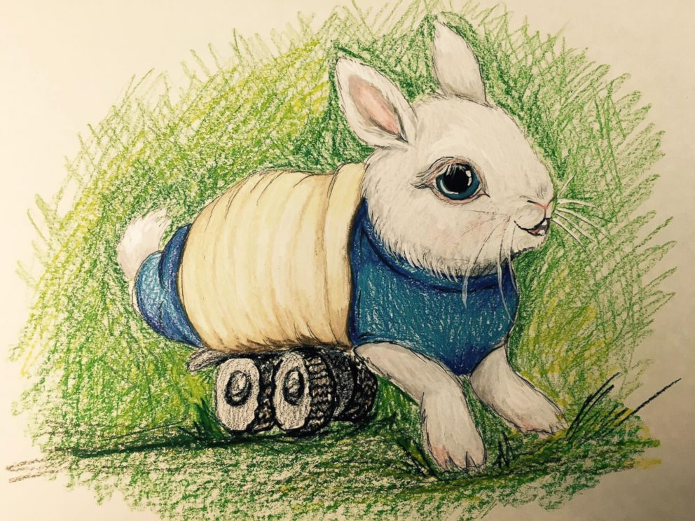 PHOTO: Wheelz the bunny, pictured here, was rescued by Overlook Acres farm owner Jason Ambrosino and his wife, Sonja Ambrosino, on Feb. 6, 2016. A sketch for the upcoming planned childrens book.