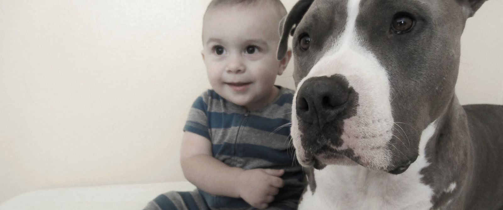 PHOTO: Three-year-old Gemma and ten-month-old Elliott have each others backs.