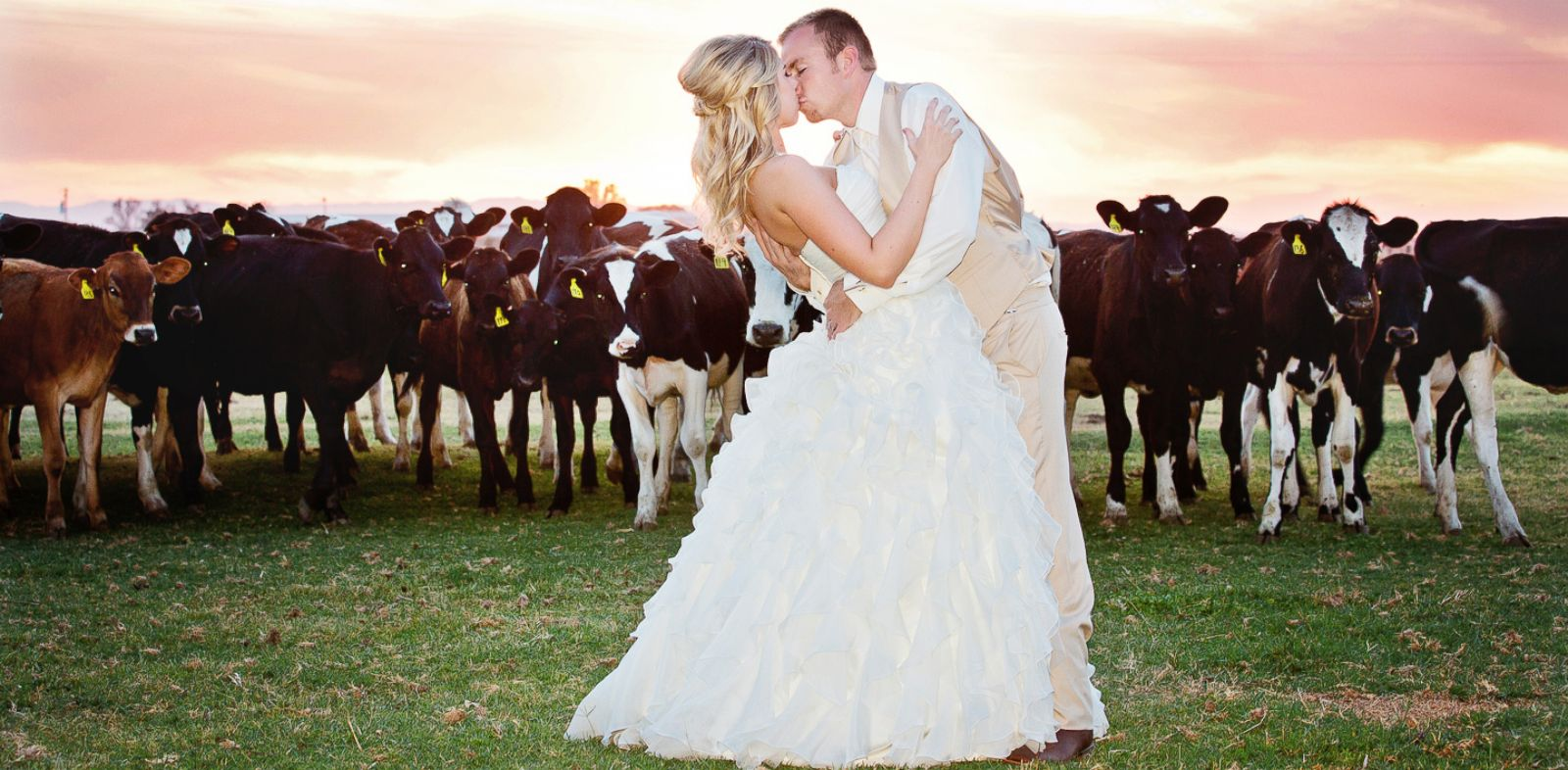 "PHOTO: Kelly Clarksons music video for Tie It Up"" featured brides and grooms taking vows at a dairy farm, reflecting a trend among couples."