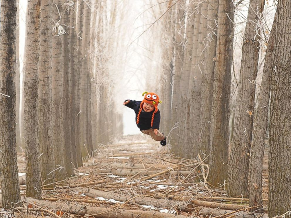 PHOTO: Wil flies amongst the trees.