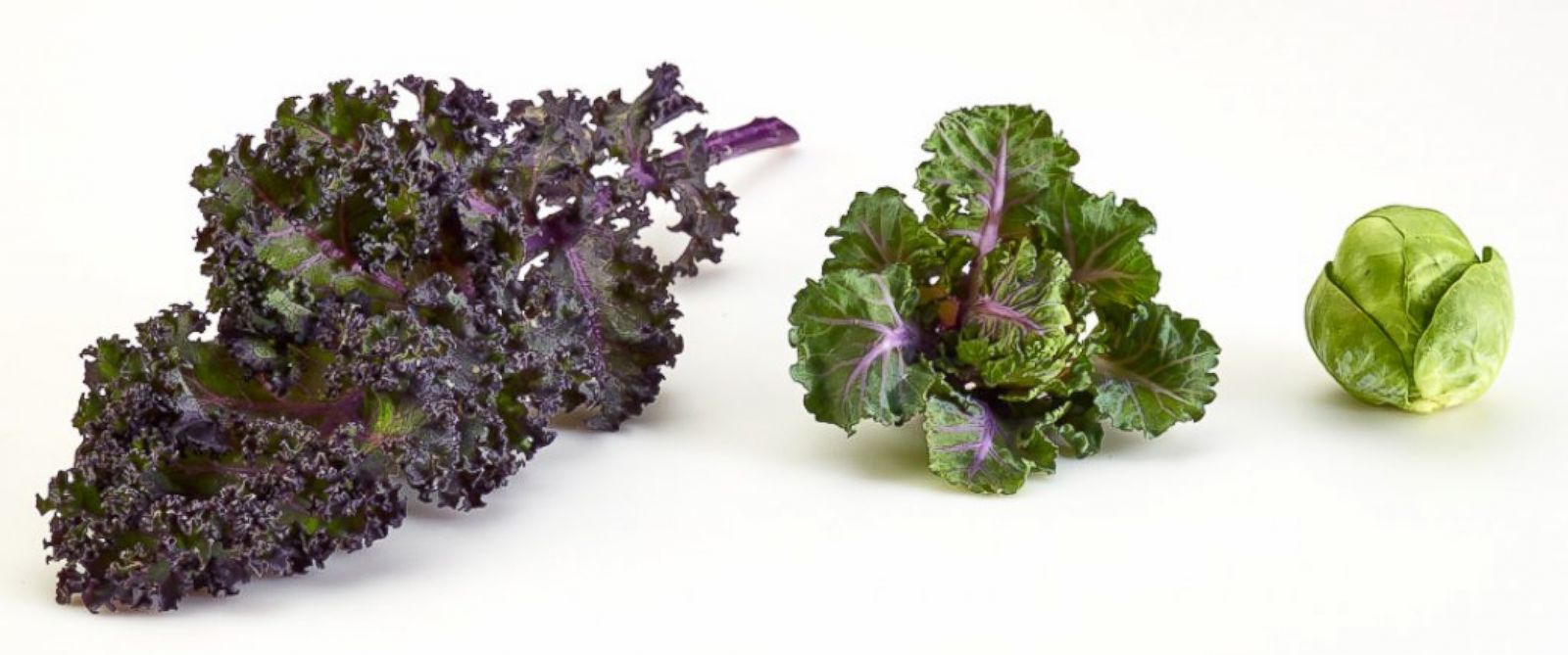 PHOTO: Kalettes are a cross between kale and Brussels sprouts.