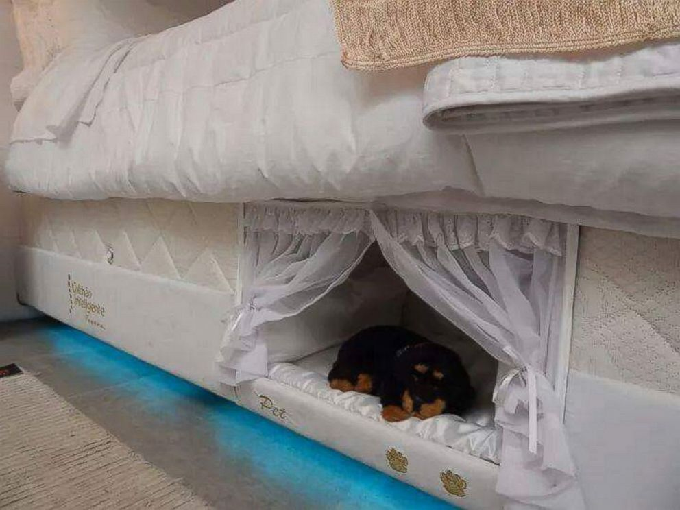 PHOTO: Brazilian company Colchão Inteligente Postural created a mattress that includes a mini-bed for your pet.