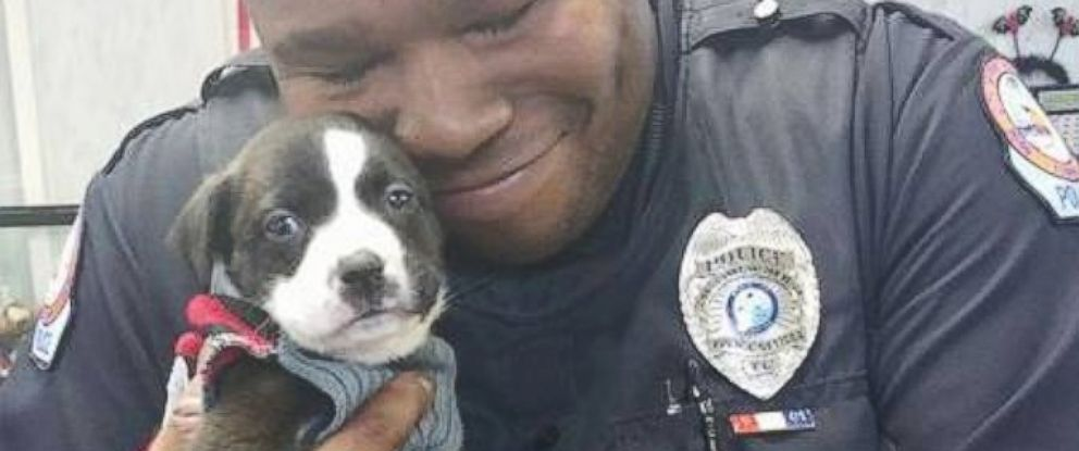 PHOTO: Florida Cop Responds to Call at Animal Shelter and Adopts Irresistible Puppy