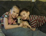 PHOTO: Dauz, an Italian greyhound, is seen with Lillian and David. Jr. Dausman at their home in Colesville, Ill., where the dog was returned after showing up in a shelter in Virginia 9 months after he went missing.