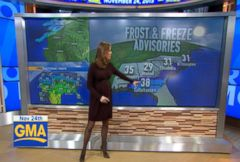 VIDEO: A $23 color-block dress on Amazon got a lot of Internet buzz after several weatherwomen were seen wearing it on TV.