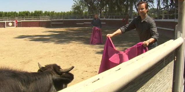 PHOTO:ABC News Neal Karlinsky attends bullfighting school in California.