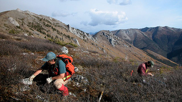 PHOTO:More than 100 years after the Klondike Gold Rush, prospector Shawn Ryan, and his wife, Cathy Wood, are leading the charge on a new gold rush in the region that has made them millionaires several times over.