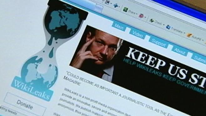 The Wikileaks Mutiny