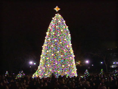 pic of the national christmas tree