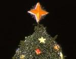 ABC News video of President Obama lighting the national Christmas tree.