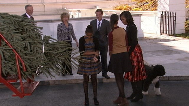 VIDEO: Michelle, Sasha and Malia Obama welcome the 19-foot Fraser fir brought in on a horse-drawn wagon.