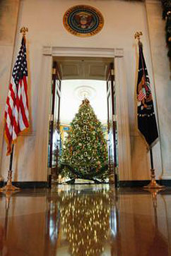 ap Blue Room Tree jt 111203 vblog Michelle Obama Honors Military Families at White House