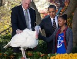 PHOTO: Sasha Obama pets Cobbler a 19-week old, 40-pound turkey, as he is pardoned by President Barack Obama on the occasion of Thanksgiving, 21, 2012, in the Rose Garden of the White House in Washington.