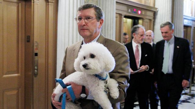 PHOTO: Kent Conrad and dog Dakota
